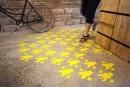 Des planchers à réinventer