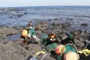 Les délices sous-marins des sirènes de Jeju