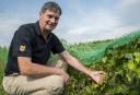 Une année «prometteuse dans les vignobles