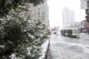 Premiers flocons de neige sur Québec