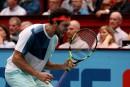 Tsonga fera face à Murray en finale à Vienne