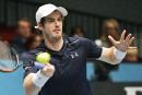 Andy Murray numéro 1 mondial cette semaine?