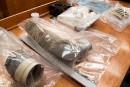 Enfants tués par un python au Nouveau-Brunswick: plaidoiries finales