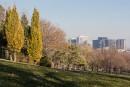 Le parc King George, à Westmount, où Leonard Cohen a... | 10 novembre 2016