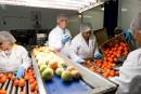 Tomapure: tout pour la sécurité alimentaire