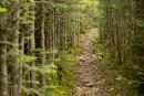 Trois randonnées à faire l'automne au Québec