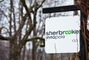 Malaise au C.A. de Sherbrooke Innopole