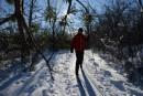 Assez de neige pour leskide fond et la raquette
