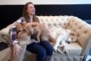 Un café à chiens pour tisser le lien entre humains et animaux