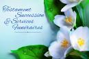 Testament, succession et services funéraires