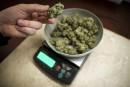 Cannabis: le message dusyndicat de la SAQ suscite des critiques