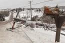 Crise du verglas au Nouveau-Brunswick: l'armée en renfort