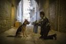 Tournage de <em>A Dog's Purpose</em>:une vidéo conçue pour indigner