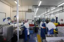 La pêche pour créer des emplois sur la Côte-Nord