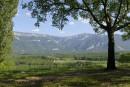 La route de la (vraie) noix de Grenoble