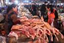 Les volailles sont très prisées en Chine.... | 24 février 2017