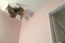 Un bloc de glace tombé d'un avion endommage une résidence