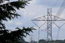 Nature Québec demande l'enfouissement de la ligne d'interconnexion