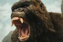 <em>Kong: Skull Island</em>: plus qu'un <em>king</em>, ce Kong ***1/2
