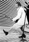 Chuck Berry, le 4 avril 1980, faisant son fameux mouvement... | 18 mars 2017