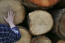 Expropriation de Billots Sélect: «Des bénéfices pour la qualité de vie»à Lac-Mégantic