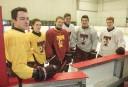 Harfangs du triolet Hockey