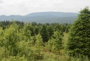 Northern Pass : Forêt Hereford demande l'enfouissement