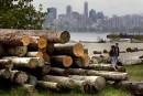 Imposition de droits sur le bois d'oeuvre: Ottawa examine les options