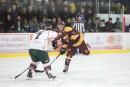 Future ligue de hockey senior: 9, 10 ou 12équipes?