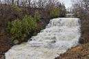 Appel à l'international pour rêver les rivières