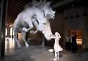 The Horse Problem, de l'Argentine Claudia Fontes... | 12 mai 2017