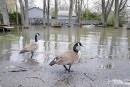 Plusieurs sources d'eau potable à risque à la suite des inondations