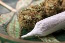 Labeaume serait prêt à taxer la marijuana<strong></strong>