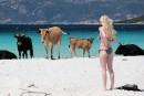 Une femme observe les vaches qui s'installent pour l'été, comme...   18 mai 2017