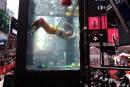 Climat: des artistes nagent dans un aquarium à Times Square