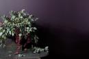 Benjamin Moore: 75 nouvelles couleurs et un fini mat doux au toucher