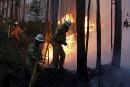 De nombreux pompiers ont été déployés pour combattre le feu... | 18 juin 2017