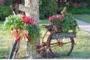 Idées de jardinières faits d'objets recyclés