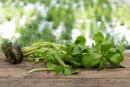 Salades: des couleurs, des textures etdes saveurs à découvrir