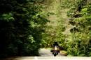 Escapade à moto: la fabuleuse route des rivières