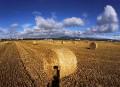 Des rouleaux de paille sont photographiés dans un champ, à...   9 août 2017