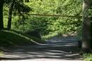 Tentative de meurtre au mont Royal: une évaluation psychiatrique pour l'accusé