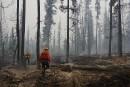Incendies en C.B.: «Ça ressemble unpeu à une atmosphère deguerre»