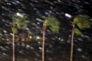 Ouragan Harvey: une Saguenéenne témoin de la panique