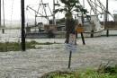 <i>Harvey</i>et ses inondations font surgir la crainte des alligators