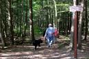 À Shefford, tout le monde connaît le parc écologique Jean-Paul-Forand.... | 1 septembre 2017