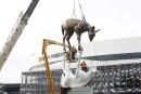 Les cerfs posent leurs sabots de bronze
