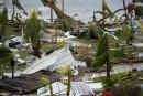 Les palmiers de l'hôtel Mercure à Marigot, sur l'île de... | 7 septembre 2017