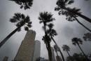 <em>La Presse</em> à Tampa : le moral est bon dans les refuges