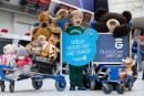 L'aéroport de Glasgow à la rescousse des ours en peluche